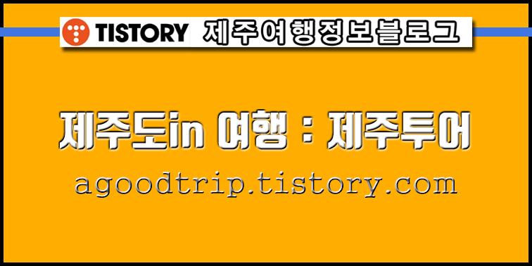 제주도in 여행 : 제주투어 여행정보 티스토리 블로그